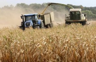 Neubrandenburg: farmers Association asks for in the...