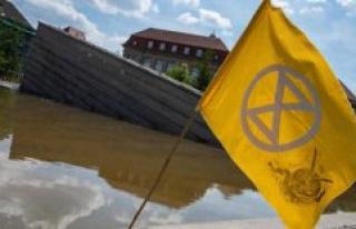 Strasbourg : Extinction, Rebellion coloured the Ill...