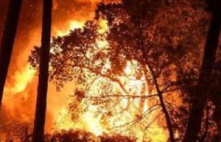 Fire dAnglet : a man has been taken into custody in...