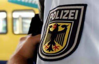 Polizeiinspektion Sankt Wendel: a fire in a grassy...