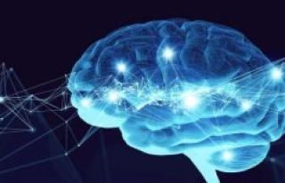 Start-up before breakthrough: high brain-Computer...