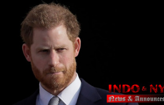 Prince Harry gives Guidance to grieving Kids in new...