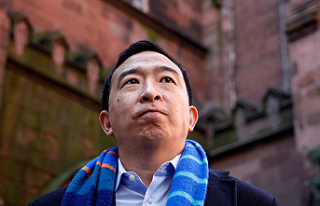 Andrew Yang's Forward Party has no direction