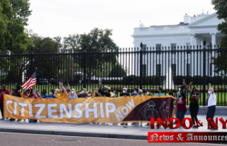 Dems consider new immigration plan for domestic policy...