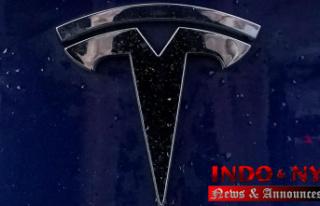 US regulators seek answers from Tesla over lack of...