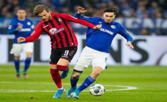 Freiburg - Schalke 04 Live-Stream: Bundesliga live on the Internet see