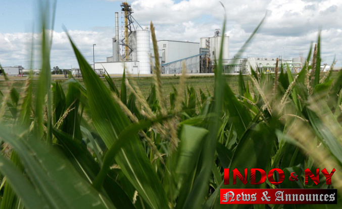 Biofuels Manufacturers, farmers Never sold on Change to Electrical